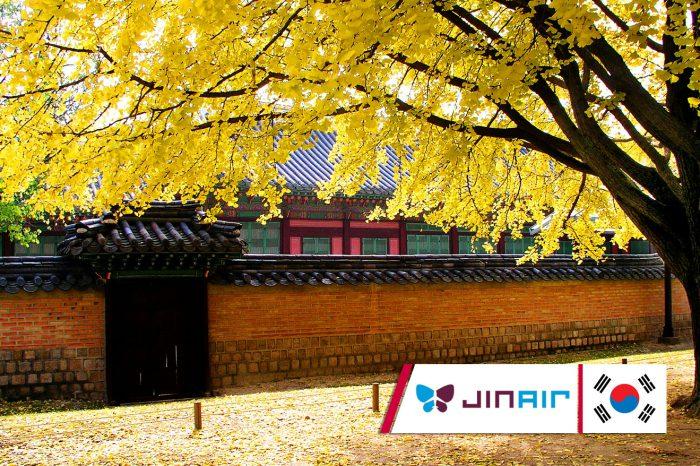 เที่ยวเกาหลี Color Leaves In Seoul (ต.ค. 60)