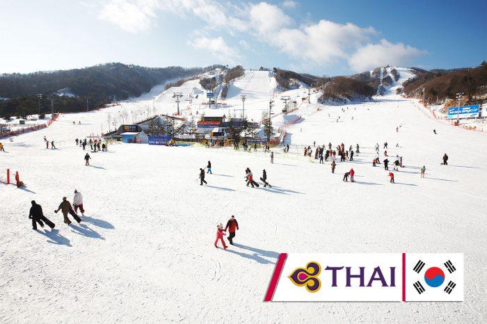 เที่ยวเกาหลี Winter Ski Resort (ธ.ค. 60)