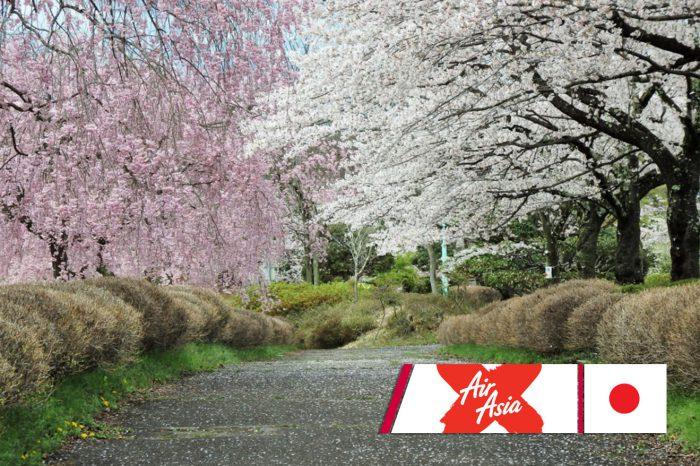 ทัวร์ญี่ปุ่น Sakura Full Bloom In Tokyo (มี.ค.-เม.ย.61)