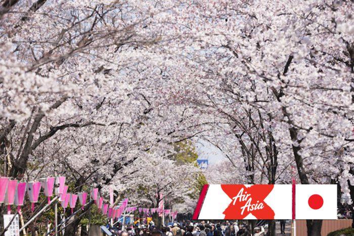 ทัวร์ญี่ปุ่น Tokyo Sakura Strong (เมษา-มิ.ย.61)