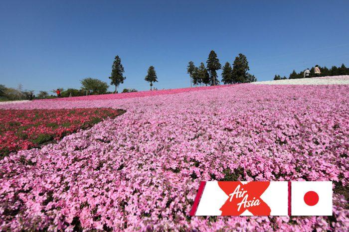 ทัวร์ญี่ปุ่น Hokkaido Pinkmoss 6D4N (พ.ค.-มิ.ย. 61)