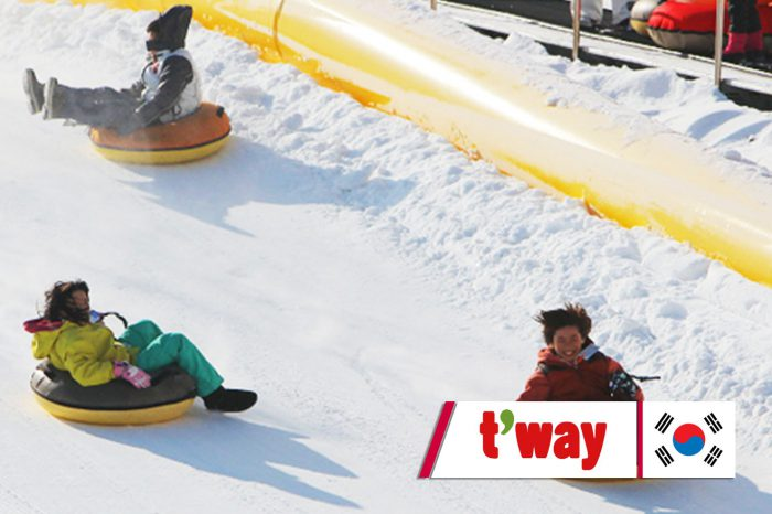 เที่ยวเกาหลี Korea April Snow Festival (สงกรานต์) (เม.ย.61)
