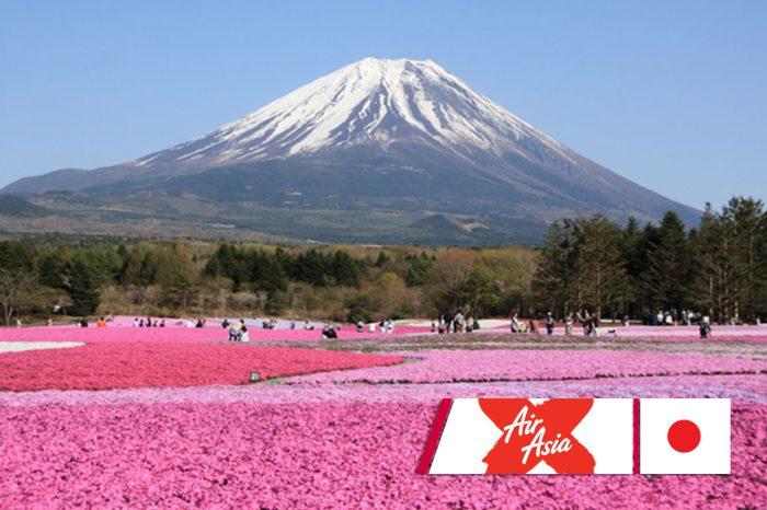 ทัวร์ญี่ปุ่น Exclusive Flower Tokyo (Pinkmoss,Wisteria) (พ.ค.61)