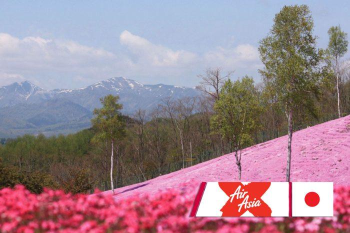 ทัวร์ญี่ปุ่น Hokkaido Pinkmoss (พ.ค.-มิ.ย.61)