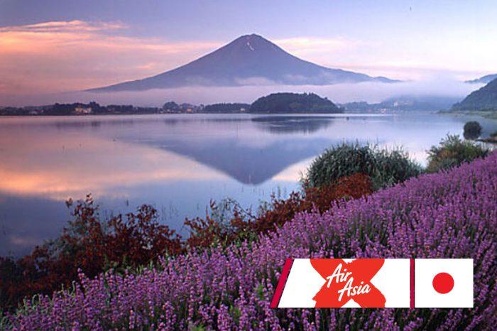 ทัวร์ญี่ปุ่น Tokyo Fuji Lavender 4D3N (พ.ค.-ก.ค.61)