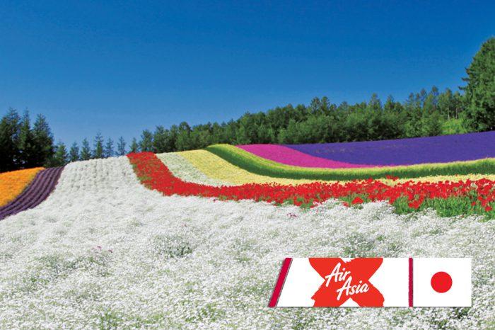 ทัวร์ญี่ปุ่น Full Flowers Hokkaido (มิ.ย.-ต.ค.61)