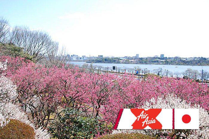 ทัวร์ญี่ปุ่น Tokyo Fuji Ibaraki Summer (มิ.ย.-ก.ย.61)