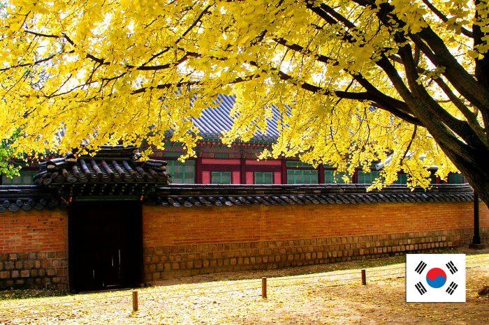 ทัวร์เกาหลี Korea plus Special Autumn (31ส.ค.-30พ.ย. 61)