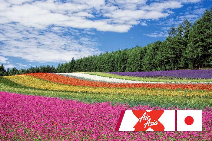 ทัวร์ญี่ปุ่น All Star Flora Bloom In Hokkaido (มิ.ย.-ก.ย.61)
