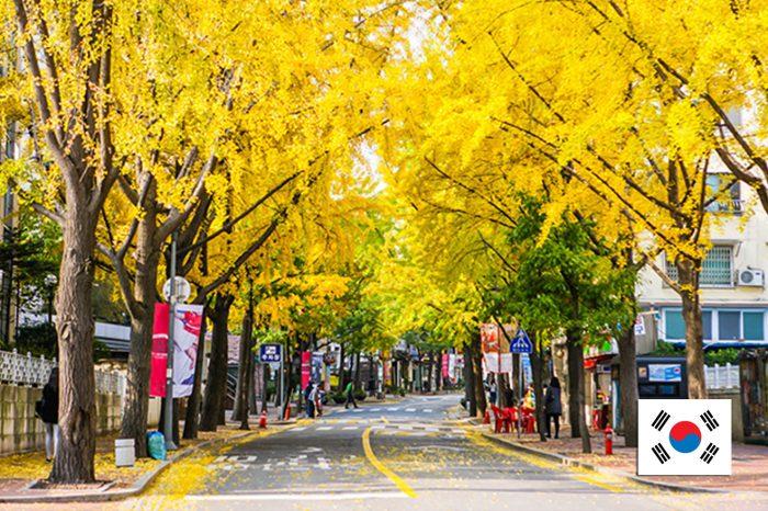 ทัวร์เกาหลี Beautiful Korea Autumn (ต.ค.-พ.ย.61)