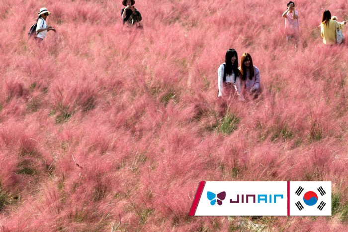 ทัวร์เกาหลี Happy Together  Romantic Autmn In Seoul (ต.ค. 61)