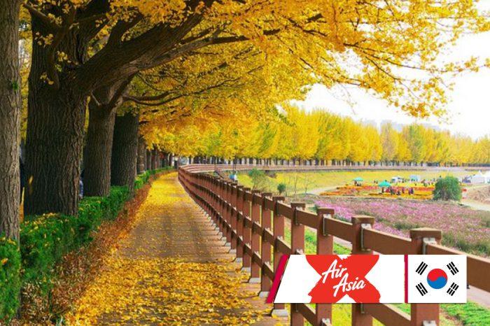 ทัวร์เกาหลี Korea Three Color Leaves (ต.ค.-พ.ย.61)