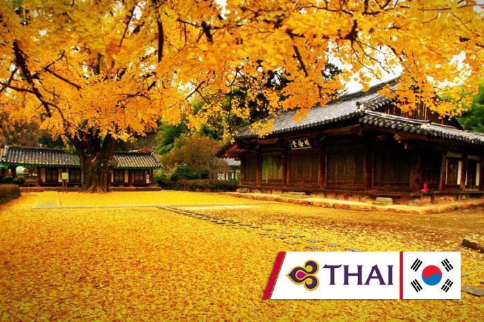 ทัวร์เกาหลี The Best Time Autumn in Seoul (ก.ย.-ต.ค.61)