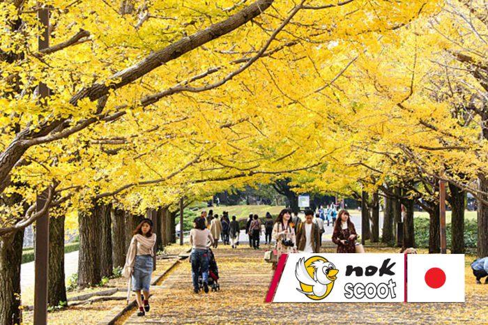 ทัวร์ญี่ปุ่น Tokyo Autumn Colorful ไม่มีฟรีเดย์ (ก.ย.-ต.ค. 61)