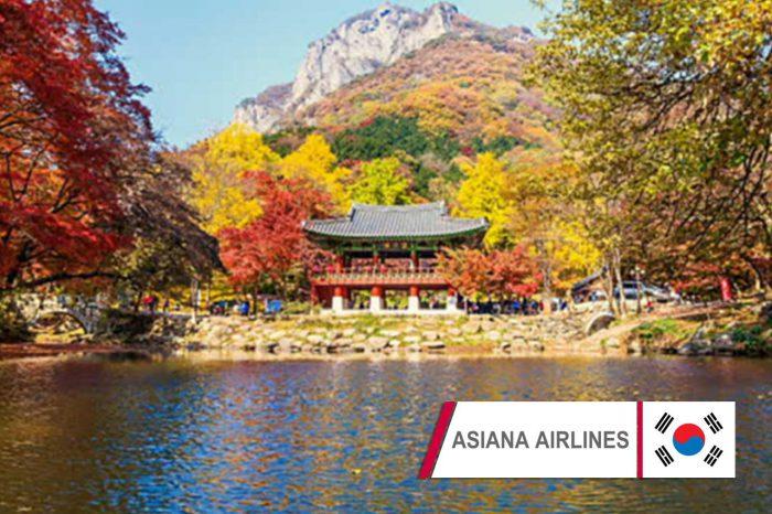 ทัวร์เกาหลี Asiana Plus Joy Autumn In Seorak (ก.ย.-พ.ย. 61)