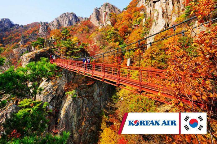 ทัวร์เกาหลี Autumn Classic Onsen (ก.ย.-พ.ย.61)