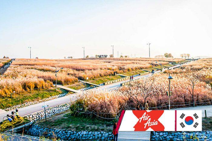 ทัวร์เกาหลี Korea Autumn Cozy (พ.ย.61)