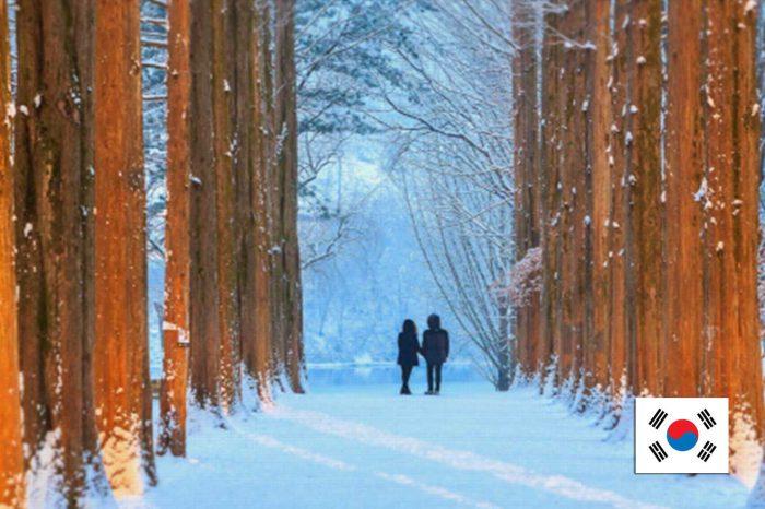 ทัวร์เกาหลี Korea Best Winter (พ.ย.-ธ.ค.61)