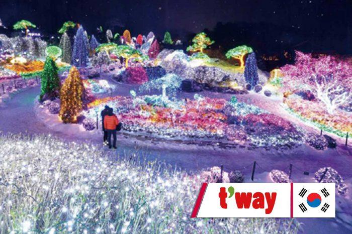 ทัวร์เกาหลี The Lighting Festival In Winter (ธ.ค.61)