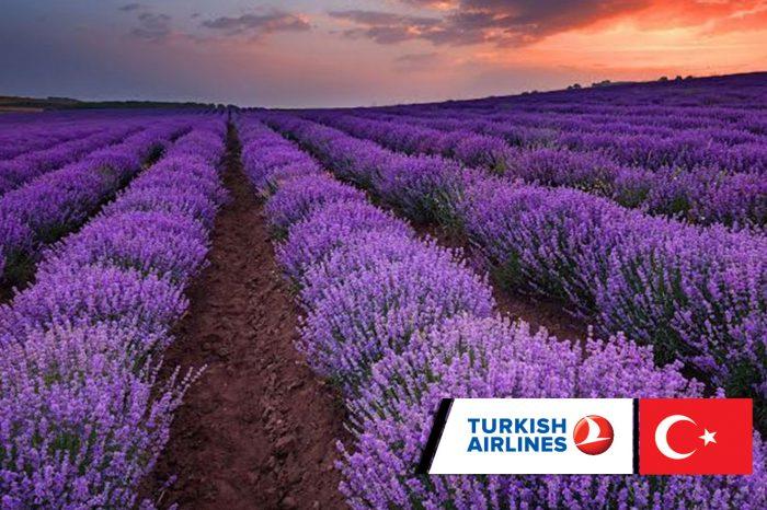 ทัวร์ตุรกี Turkey Lavender Garden 9 วัน 6 คืน (ก.ค.61)