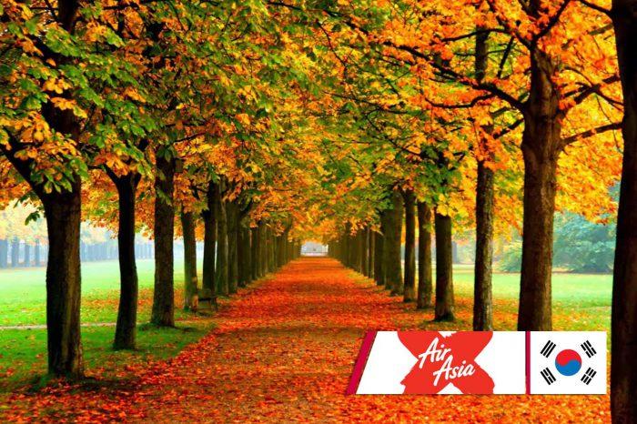 ทัวร์เกาหลี Hello Autumn (ต.ค.-พ.ย.61)