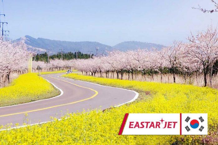 ทัวร์เกาหลี Jeju Special Spring (มี.ค.-พ.ค.62)