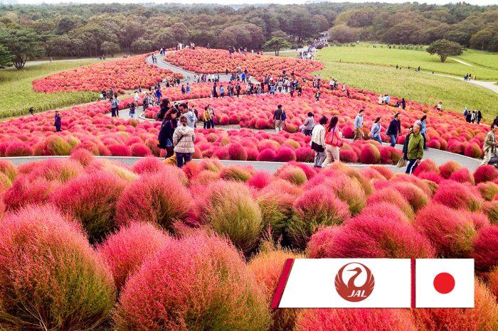 ทัวร์ญี่ปุ่นพรีเมียม Sendai Autumn 6D4N (10-15ต.ค. 61)