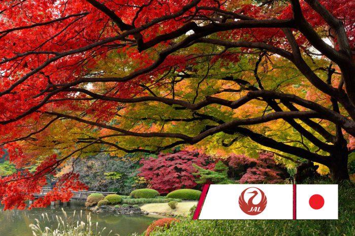 ทัวร์ญี่ปุ่นShirakawago Kanazawa (ก.ย.-ต.ค. 61)