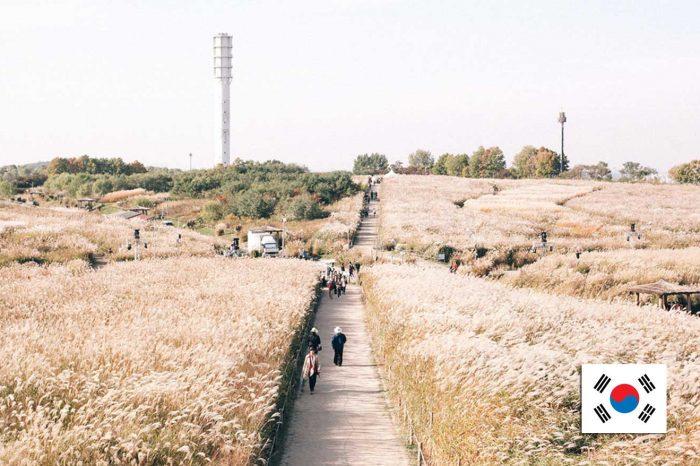 ทัวร์เกาหลี Korea Autumn Sale (ก.ย.-พ.ย.61)